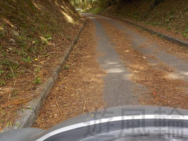 落ち葉で滑りやすい道