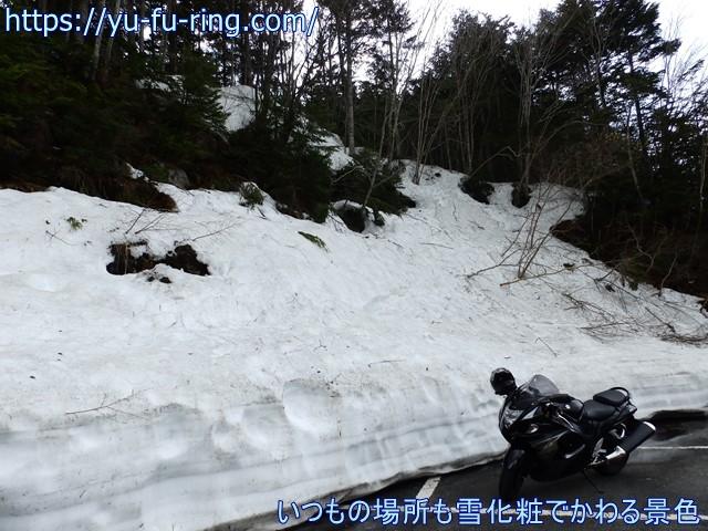 いつもの場所も雪化粧でかわる景色
